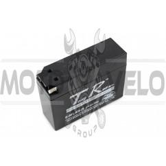 АКБ 12V 2,3А пастовый, Suzuki (113x39x89, ``таблетка``, черный) TR