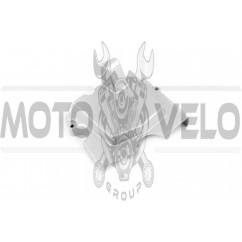 Крышка звезды передней   4T СВ125/150   EVO
