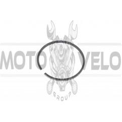 Кольца б/п ДРУЖБА (1шт, Ø48mm) (Польша) MOTUS (#VCH)