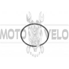 Кольца б/п УРАЛ (1шт) (Ø55mm) (Польша) MOTUS (#VCH)