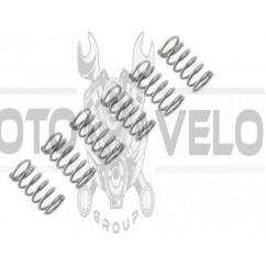 Пружины сцепления м/б 175N/180N (7/9Hp) DIGGER