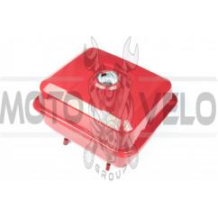 Бак топливный м/б 177F (9Hp) ZS