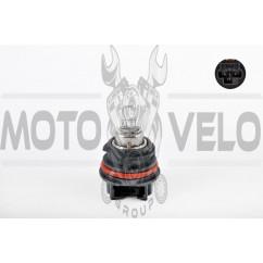 Лампа PH11 12V 40W/40W (Honda AF35/48/51) BEST