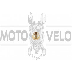 Гужон головки (футорка) для 4T свечи (Ø10mm/14mm, L-13mm, латунь)