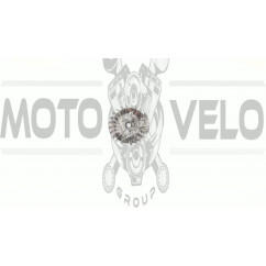 Магнето б/п   для Goodluck GL 5800   EVO