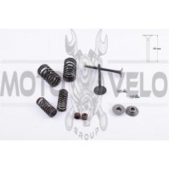 Клапаны (пара, в сборе) Delta 70 (L-66mm)