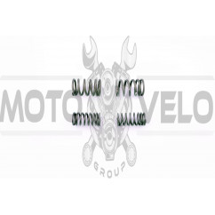 Пружины клапанов (комплект) Delta EVO