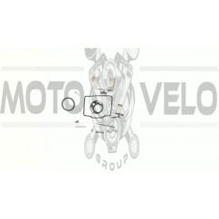 Ремкомплект карбюратора   Alpha 110   EVO