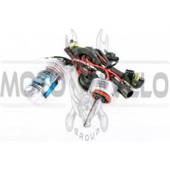 Лампы ксеноновые (пара) H8 (12V 50W DC AMP) 4300K
