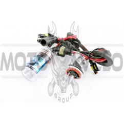 Лампы ксеноновые (пара) H9 (12V 50W DC AMP) 6000K