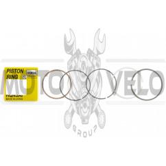 Кольца 4T GY6 100 .STD (Ø50,00) HQNSAI
