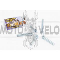Болты крышки вариатора Honda TACT 16/24/30 (крестообразный шлиц, 5шт) AS