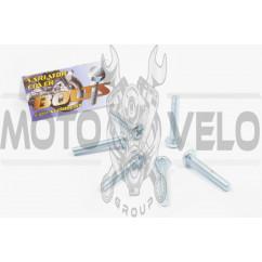 Болты картера Yamaha (крестообразный шлиц, 6шт) AS