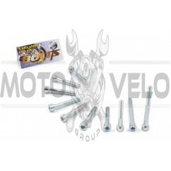 Болты крышки вариатора 4T GY6 150 (шестигранный шлиц, 10шт) AS