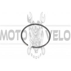 Кольца ИЖ ПЛАНЕТА 1р. (Ø72,50) (1шт) (Польша) MOTUS (#VCH)