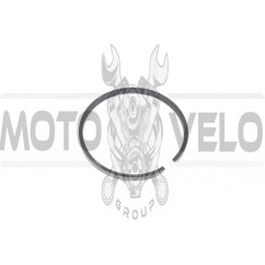 Кольца КАРПАТЫ .STD (Ø38,00) (1шт) (Польша) MOTUS (#VCH)