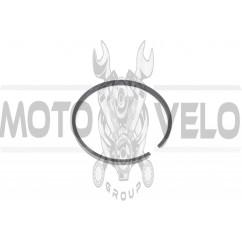 Кольца КАРПАТЫ 2р. (Ø38,40) (1шт) (Польша) MOTUS (#VCH)