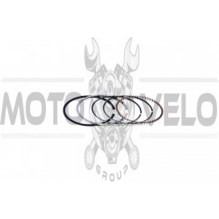 Кольца 4T GY6 80 .STD (Ø47,00) ZUMBA (mod.A)