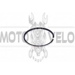 Кольца ВОСХОД STD. (Ø61,75) (1шт) (Польша) MOTUS (#VCH)