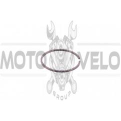 Кольца ВОСХОД 1р. (Ø62.00) (1шт) RGC