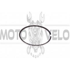 Кольца ИЖ ПЛАНЕТА СПОРТ 2р. (Ø77,00) (1шт) (Польша) MOTUS (#VCH)