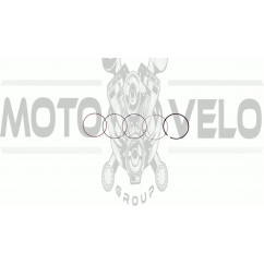 Кольца   4T CB/CG   Ø54,00mm   (125/140cc STD)   SUNY   (mod.A)