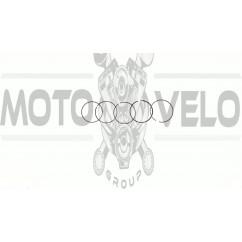 Кольца   Active 110   .STD   (Ø52,40)   SUNY   (mod.A)
