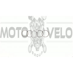 Кольца   Active 110   0,25   (Ø52,65)   SUNY   (mod.A)