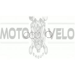 Кольца   Delta 100   .STD   (Ø50,00)   SUNY   (mod.A)