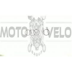 Кольца   Delta 70   .STD   (Ø47,00)   SUNY   (mod.A)