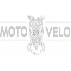Кольца   Honda LEAD, GYRO 50   .STD   (Ø40: AF01E, AF03E, TA01E)   JIN   (mod.A)