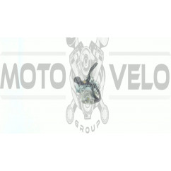 Карбюратор   Delta 110   (ручная заслонка)   EVO