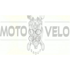 Кольца   Delta 100   0,75   (Ø50,75)   (SEE)   EVO