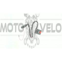 Блок кнопок руля (правый)   ИЖ   (нового образца)   EVO
