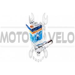 Лампа диодная BA20D (12V 5W) YWL