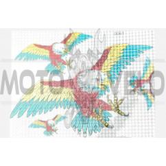 Наклейки (набор) EAGLE (30х22см) (#0061A)