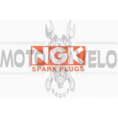 Наклейка логотип NG (11х6см) (#0241)