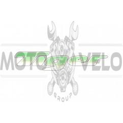 Наклейка декор TIGER (20х5см) (#3279)