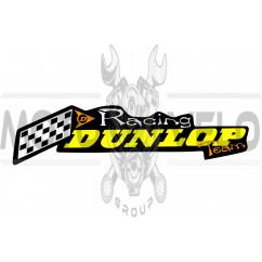 Наклейка логотип DUNLOP (20х5см) (#3136)