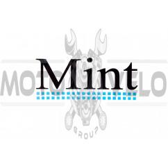 Наклейки (набор) MINT (13х5.5см) (#1264)