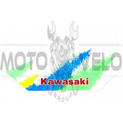 Наклейки (набор) KAWASAKI (29х14см) (#0768)
