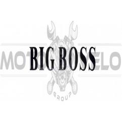 Наклейка декор BIG BOSS (18x7.5см) (#5944)