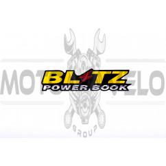 Наклейка шильдик BLITZ (14.5x4см) (#1647)