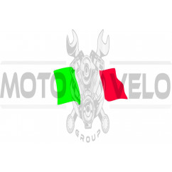 Наклейка (10x4.5см) (#5168) ITALY