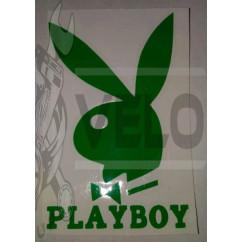 Наклейка   логотип   PLAYBOY   (16x11см, зеленая)   (#647)