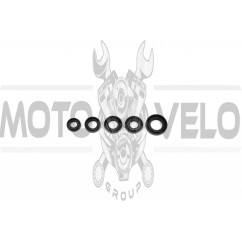 Сальники (набор)   4T CB200   EVO