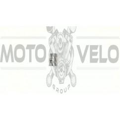 Поршень   МИНСК 4р.   (Ø52,75)   EVO
