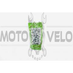 Болт крепления рычага натяжителя цепи Delta 70 (d-8mm, L-25mm) MOZBA
