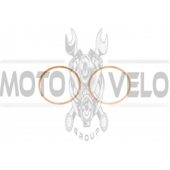 Прокладка головки цилиндра   МТ, ДНЕПР   (пара) (медь) (0,3 мм)   CJl