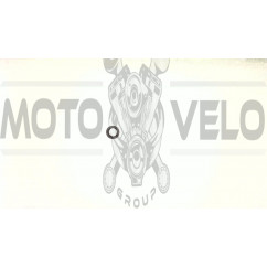 Сальник Honda DIO (20*31*7) HND (mod A)
